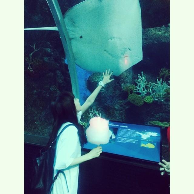 Dara : Dara la touriste à Singapour~ 🐠🐟🐬🐳🐋 #aquarium #sentosa